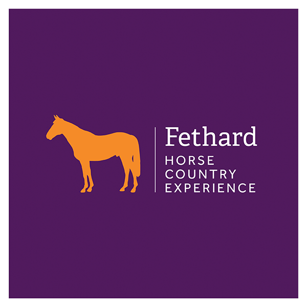 Fethard-Horse-Country-Experience